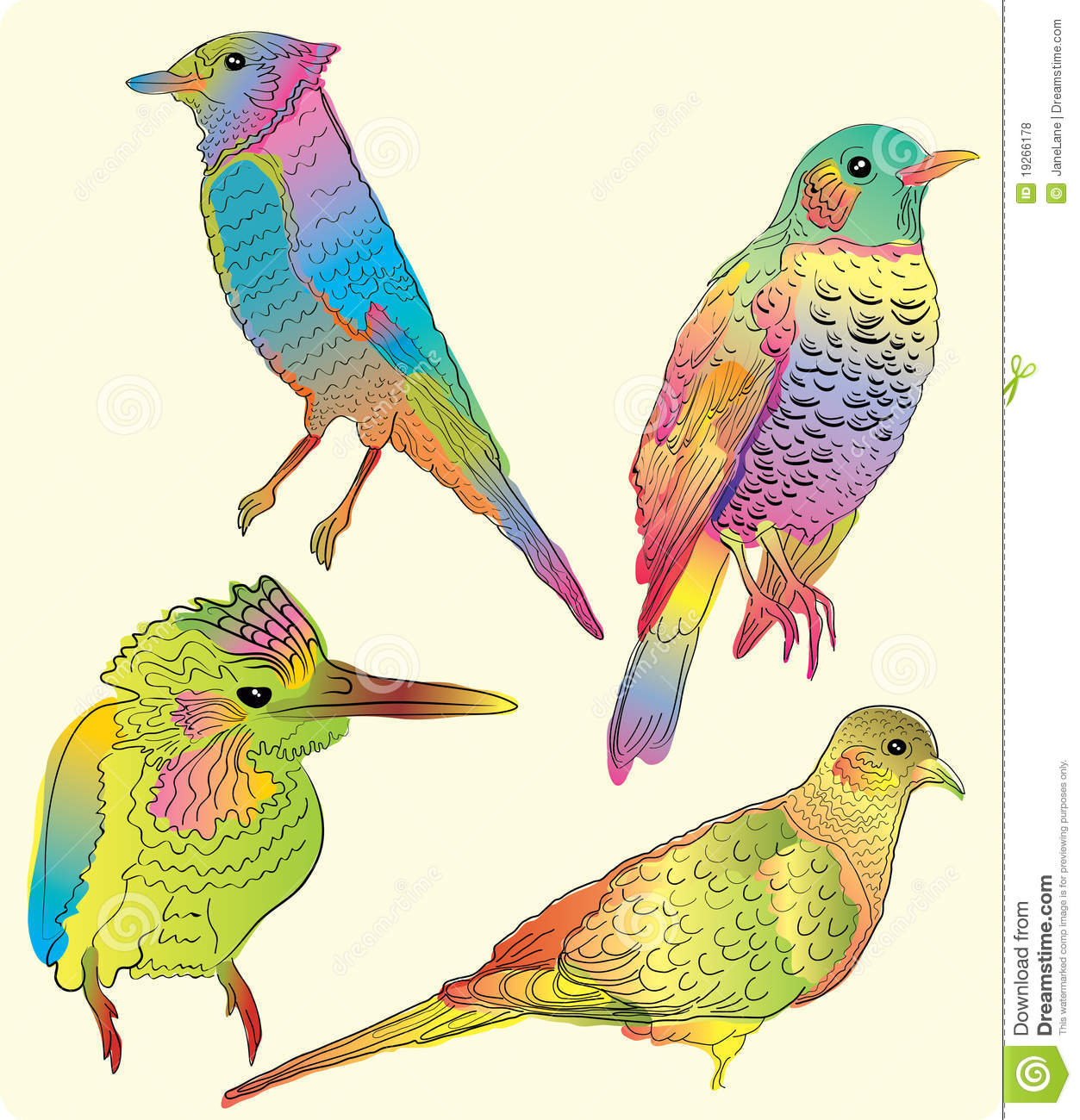 Four beautiful birds hand drawing illustration
