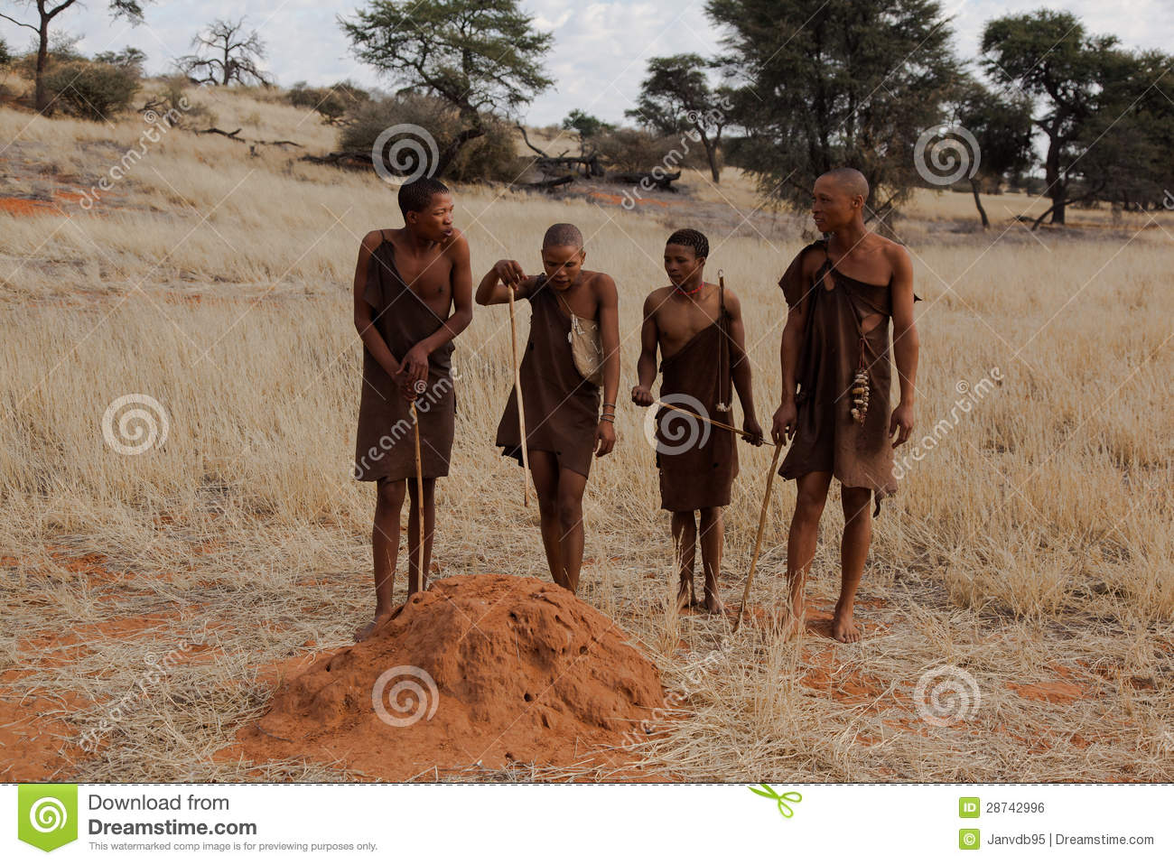 the bushmen of the kalahari desert For most of the past 100 000 years, south africa has been inhabited by small, mobile groups of hunter-gatherers called the san (bushmen) the san are.