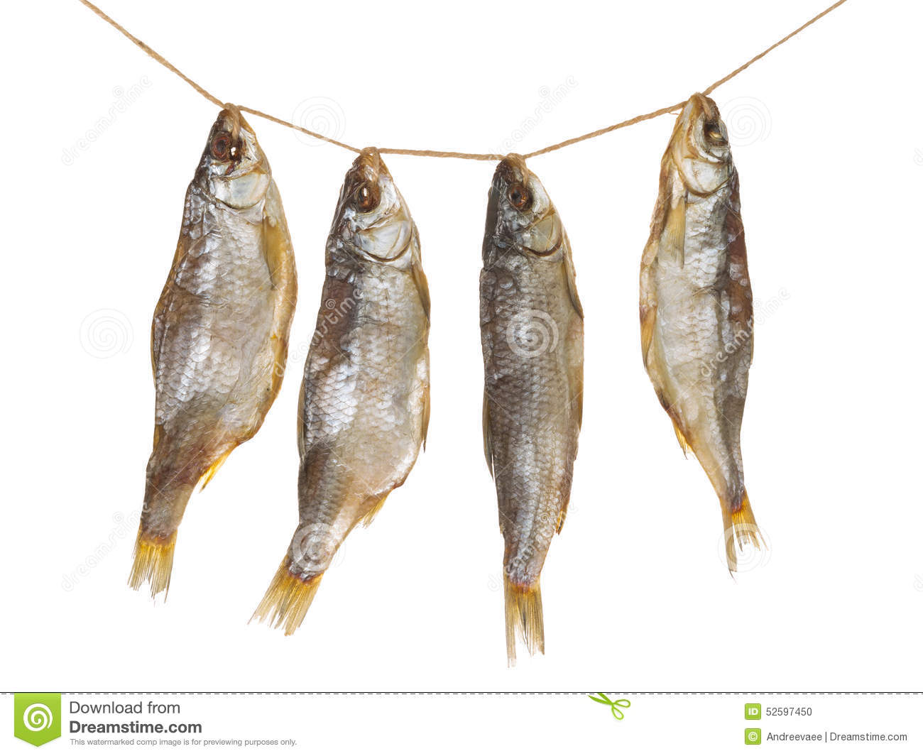 Four delicious dried fish stock photo. Image of fish - 52597450 for Dried Fish Clipart  55jwn