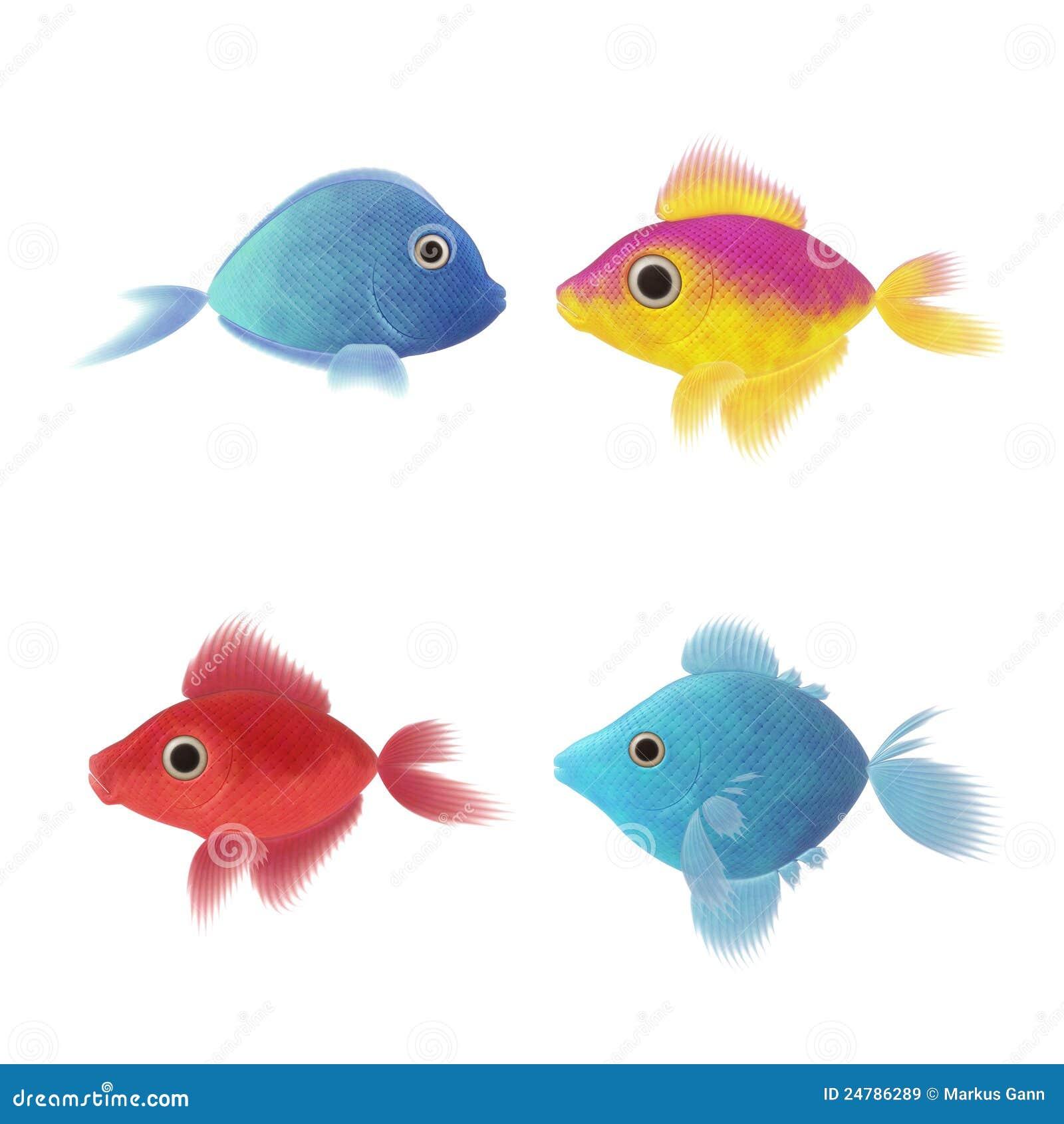 nice fish wallpaper