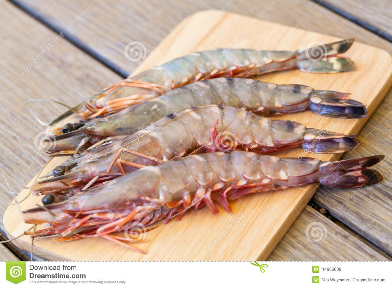 Four Fresh Whole Tiger Prawns Stock Photo - Image: 44966039