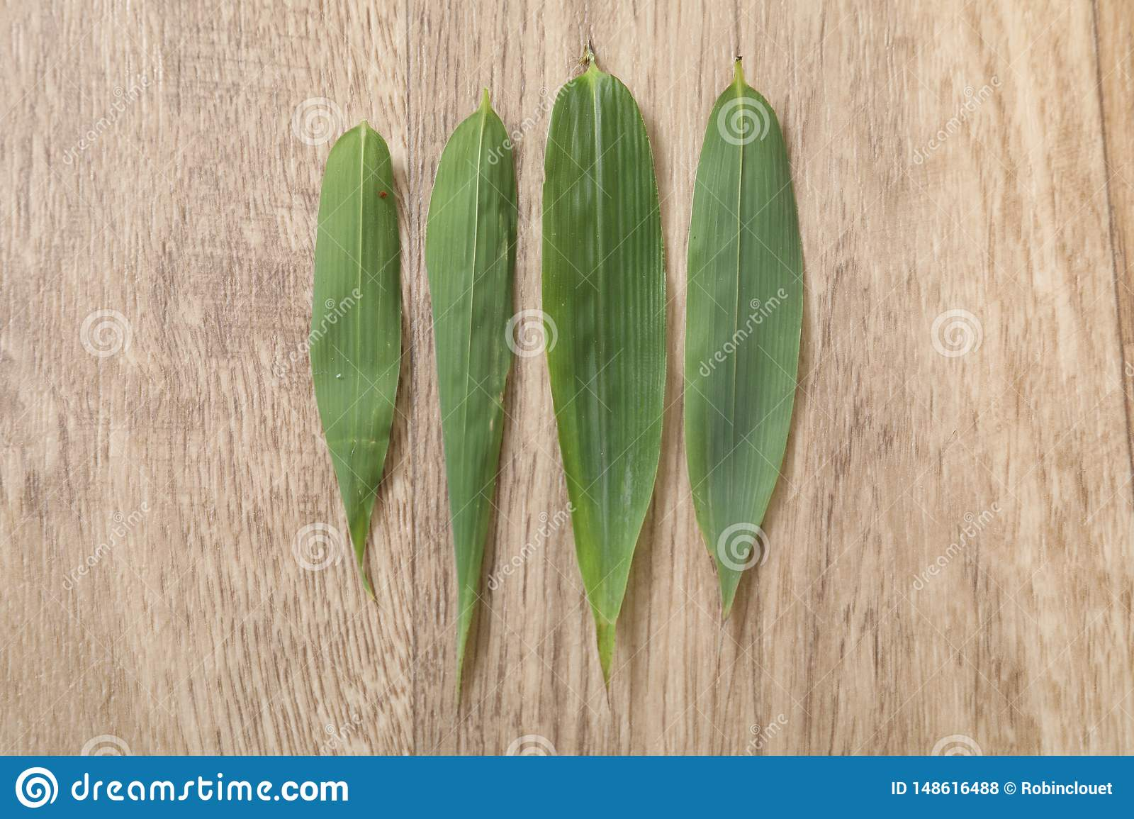 Four green bambou leaf on wood table