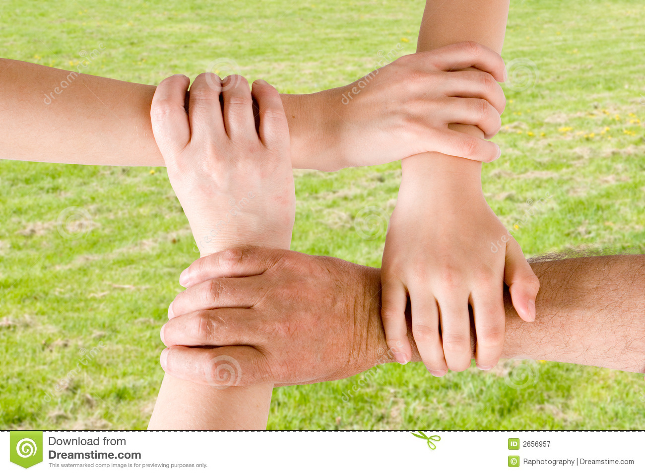 four hands joined together stock image image of business 2656957