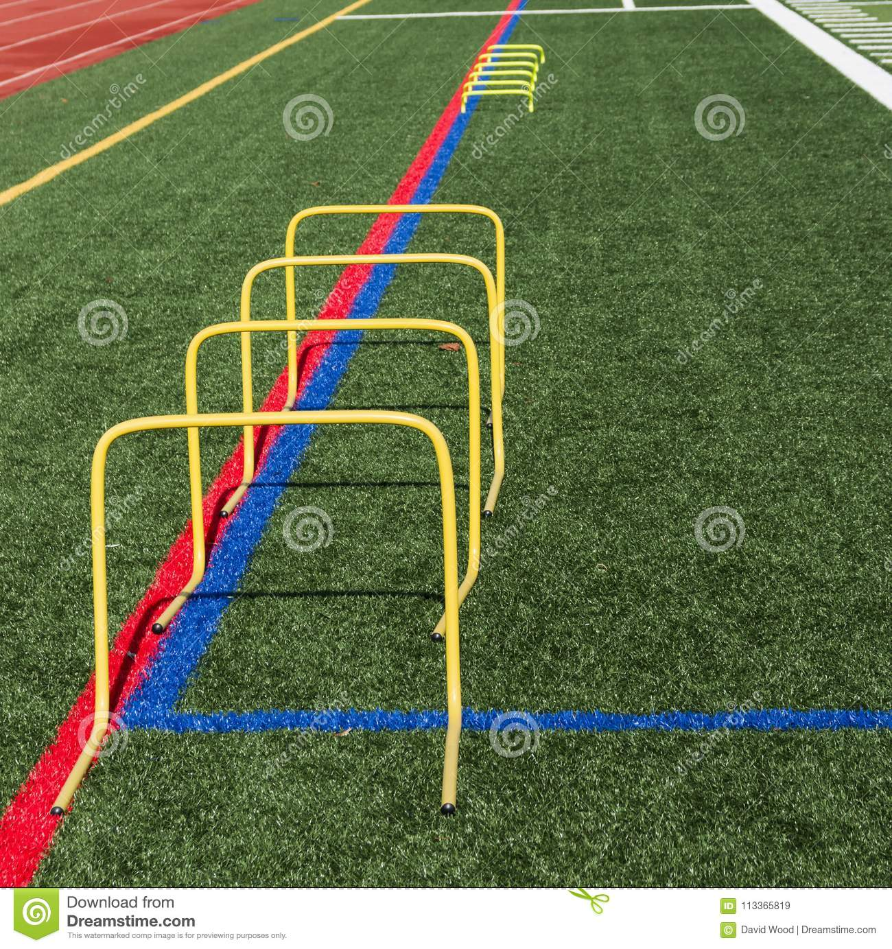 24 inch yellow banana step hurdles on turf field