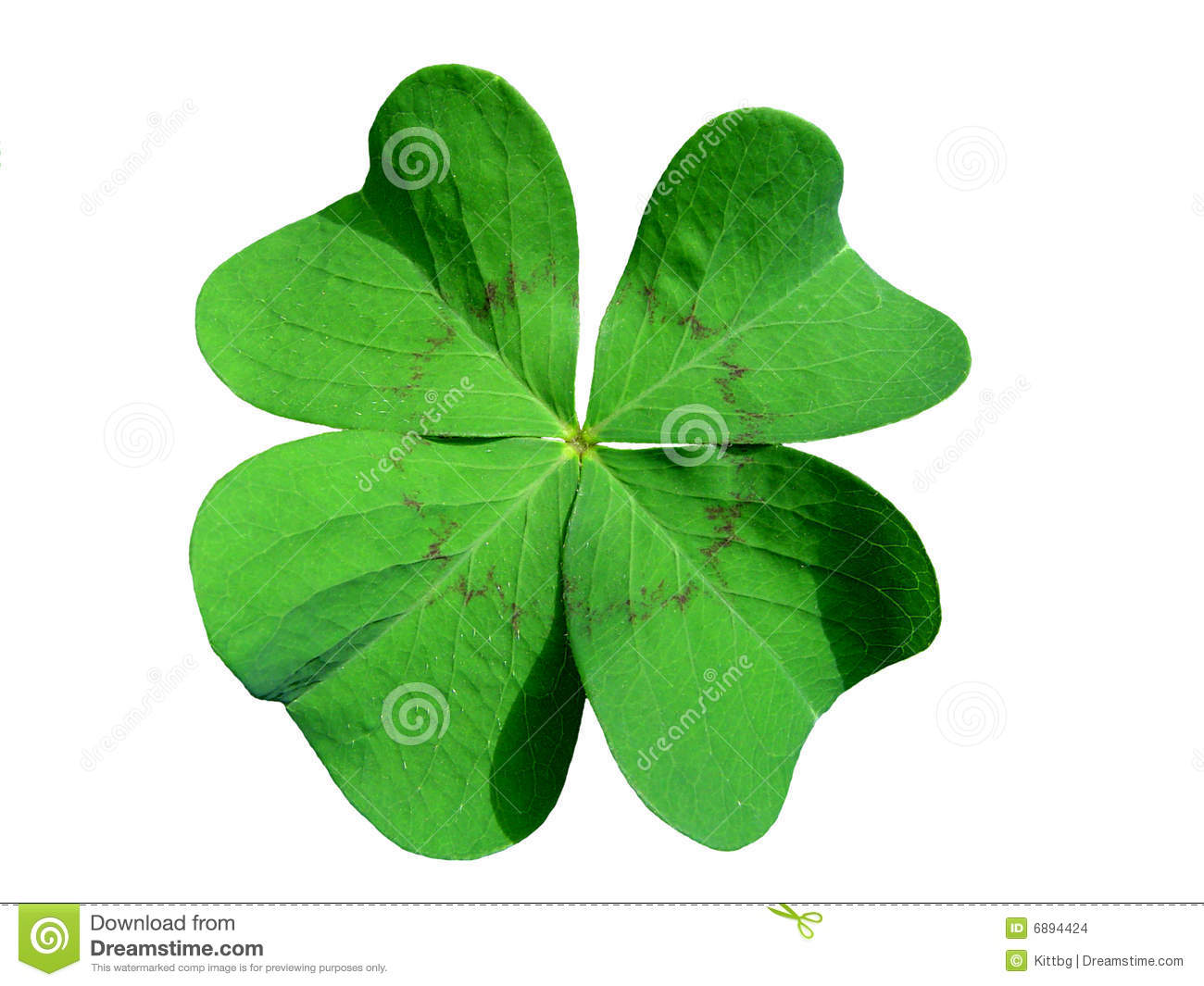 clover hispanic singles Patient registration asian african american am indian caucasian hispanic about white clover.