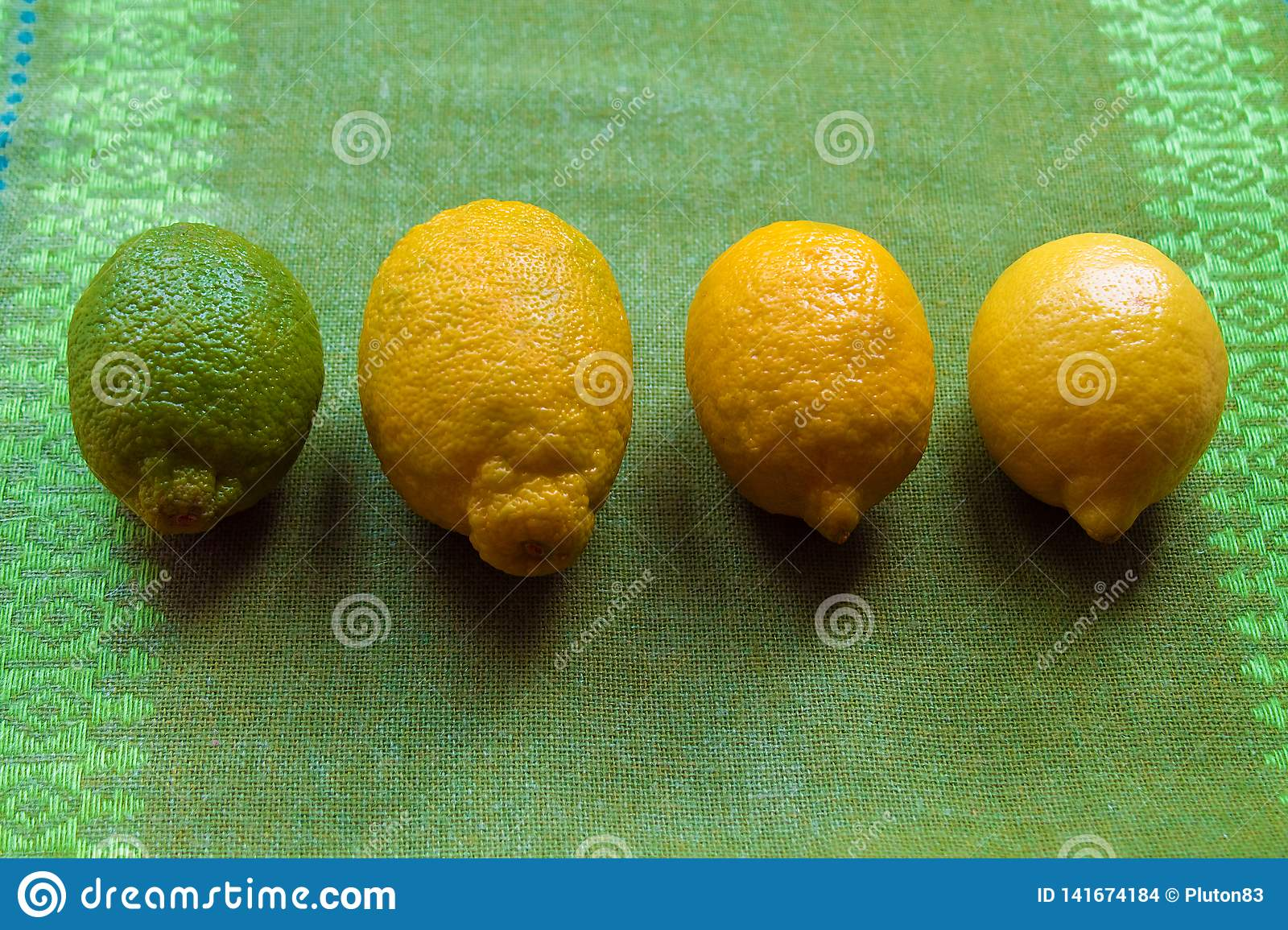 Four lemons of different maturity lie on a table or on a white background