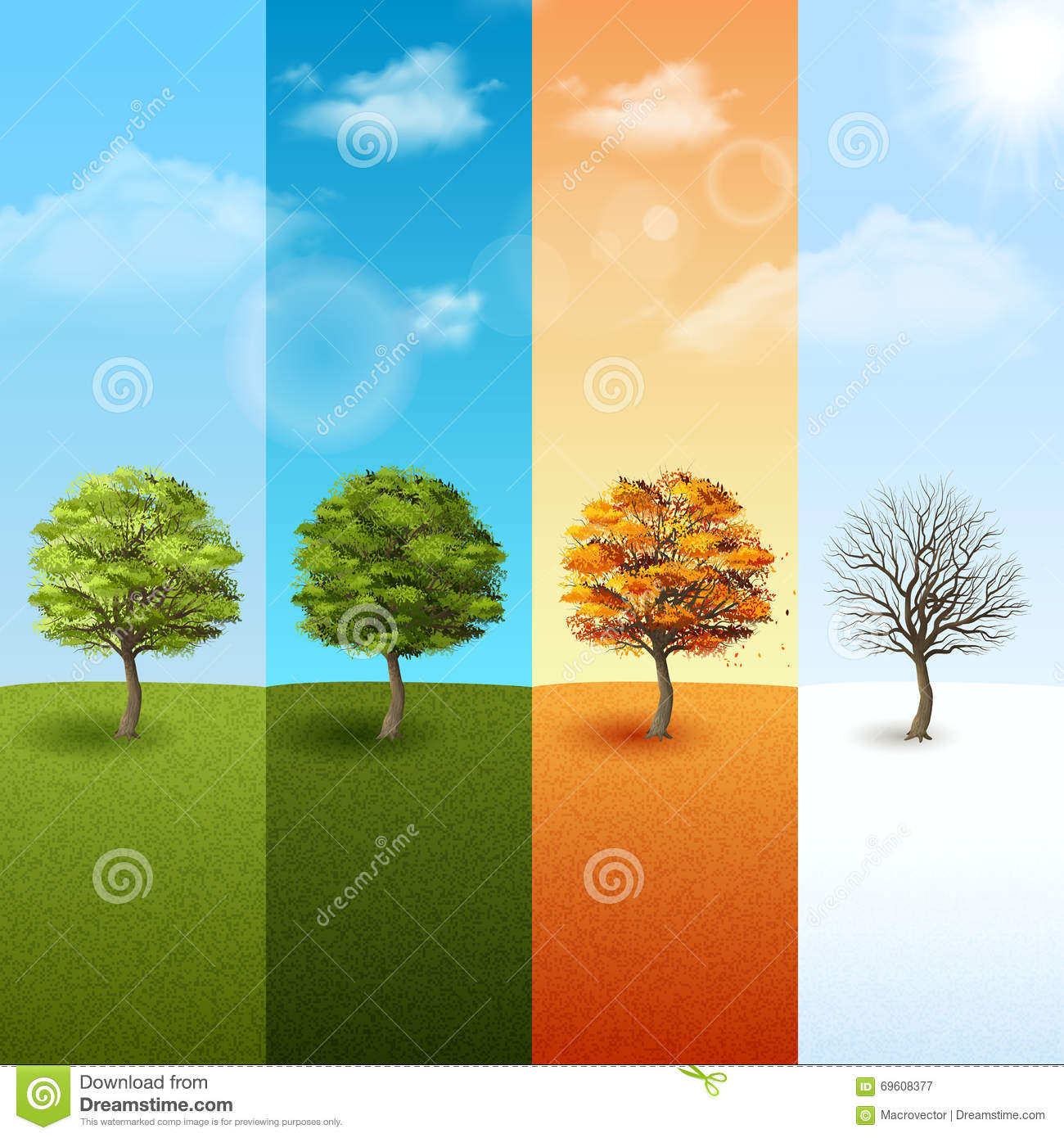 four season tree banner set stock vector