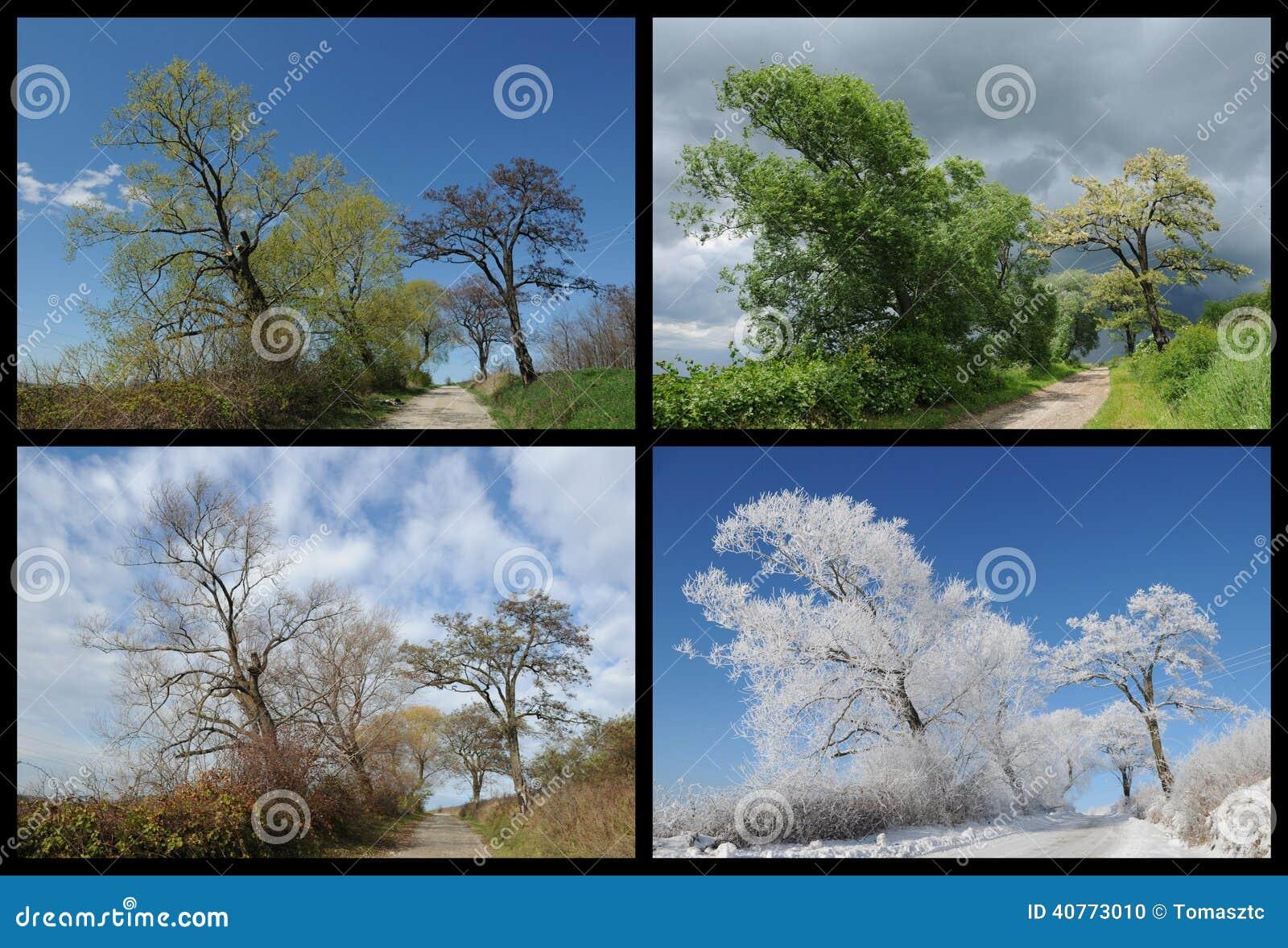 Four seasons landscape - Four Seasons Landscape Stock Photo. Image Of Seasons - 40773010