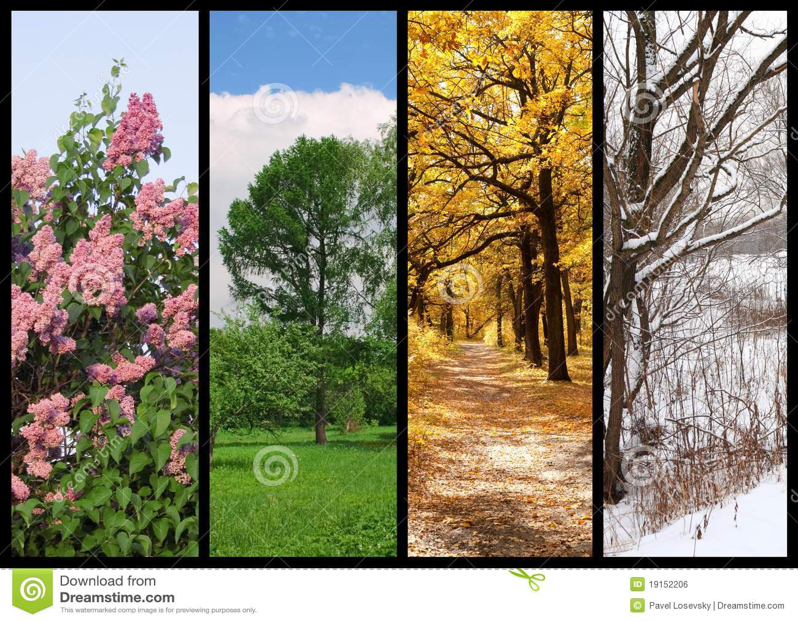 Four seasons spring, summer, autumn, winter