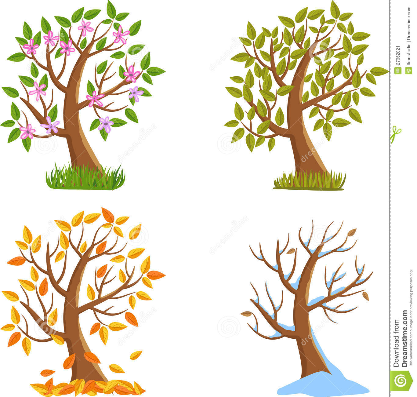 Four Seasons Tree stock vector  Illustration of forest