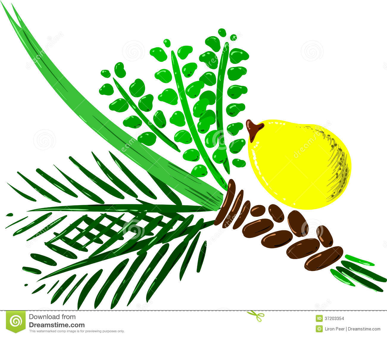 Four Species For Rosh Hashana Version 2 Stock Images - Image: 37203354
