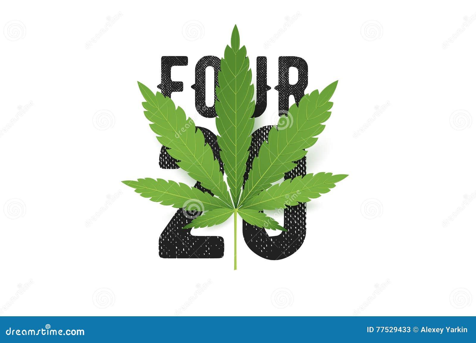 Four-twenty koszulki wektorowy druk z realistycznym marihuana liściem Konceptualna marihuany kultury ilustracja