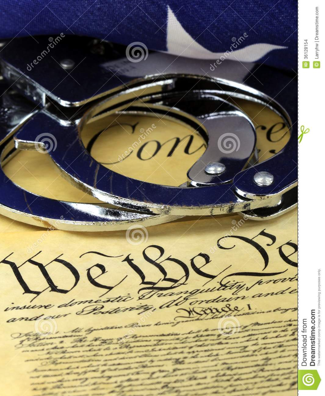 analysis of the fourth amendment in the bill of rights Us constitution  bill of rights bill of rights first amendment [religion, speech, press, assembly,  fourth amendment [search and seizure (1791)] (see.