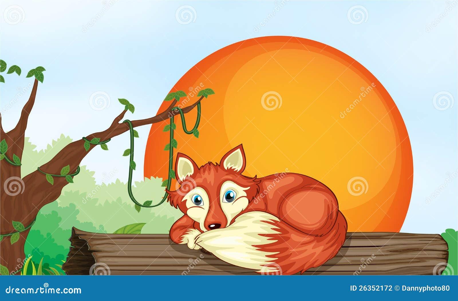 Fox, der auf Holz stillsteht