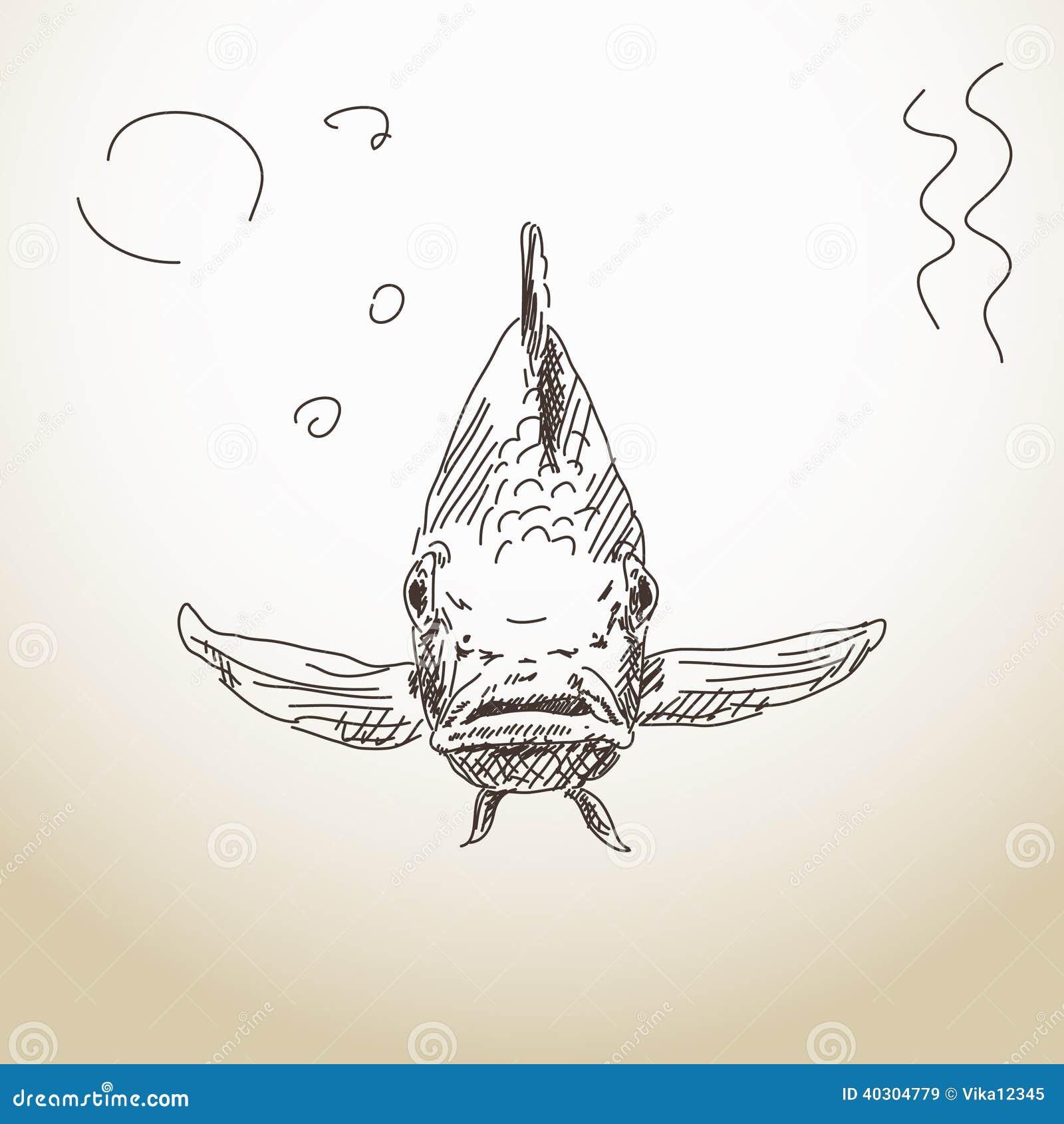 Främre sikt för fisk