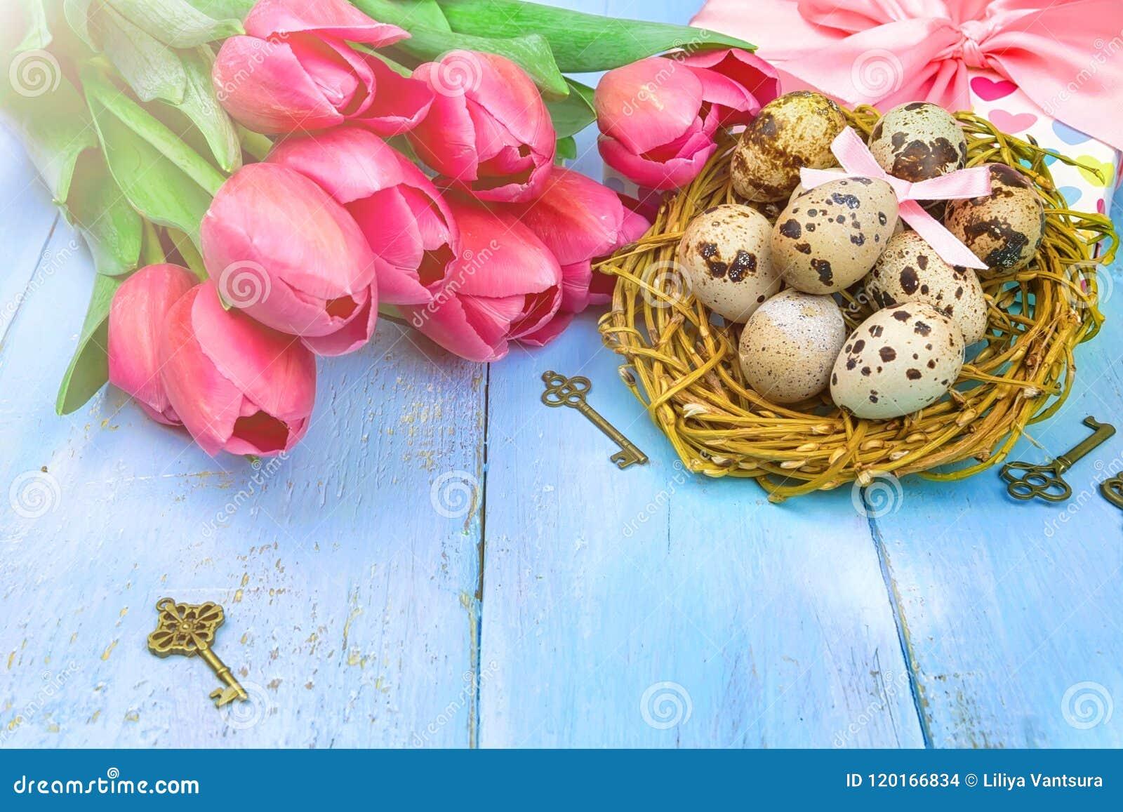 Fröhliche Ostern Glückwunsch Ostern Hintergrund Ostereier