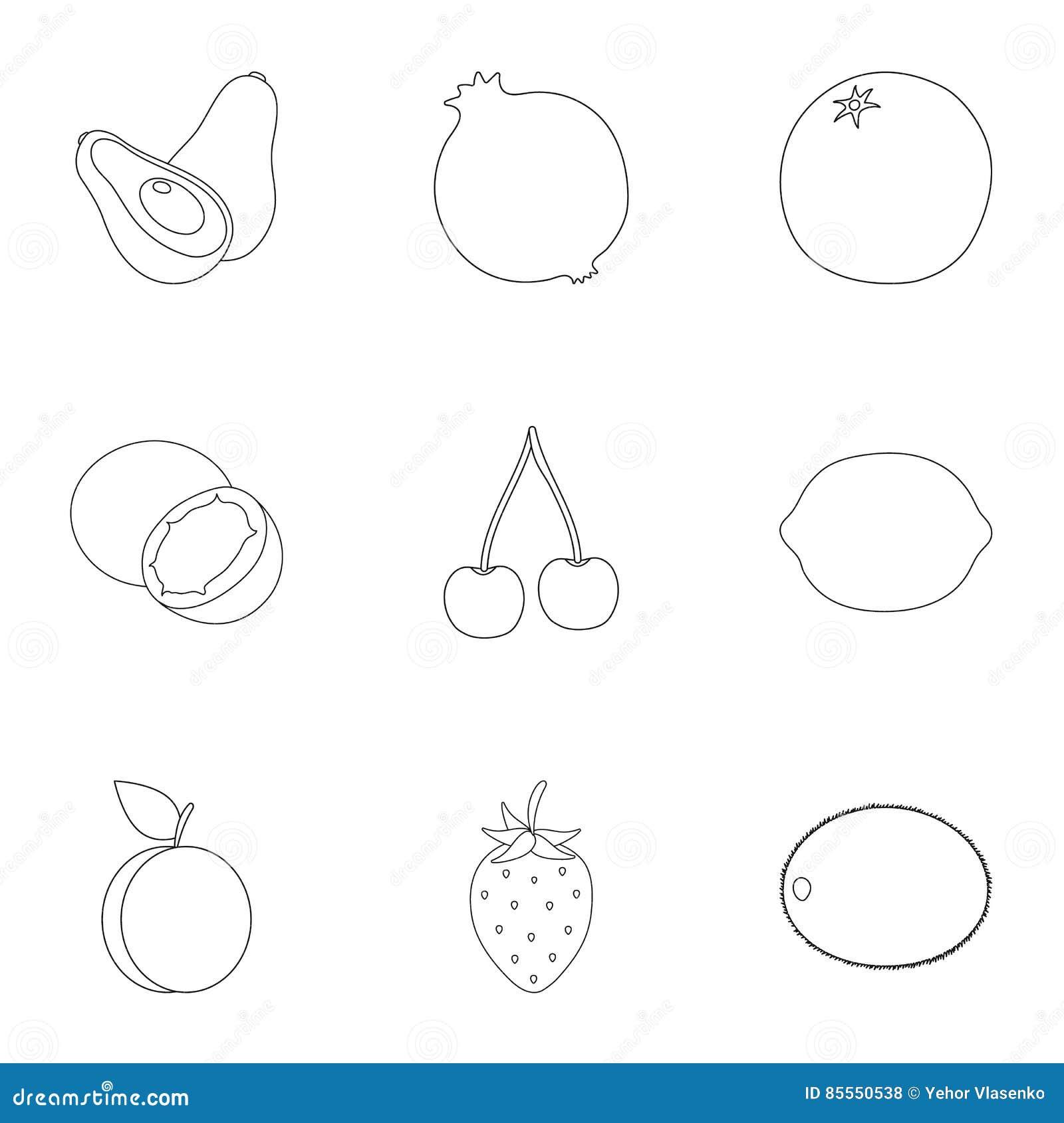 Früchte stellten Ikonen in der Entwurfsart ein Große Sammlung der Fruchtillustration