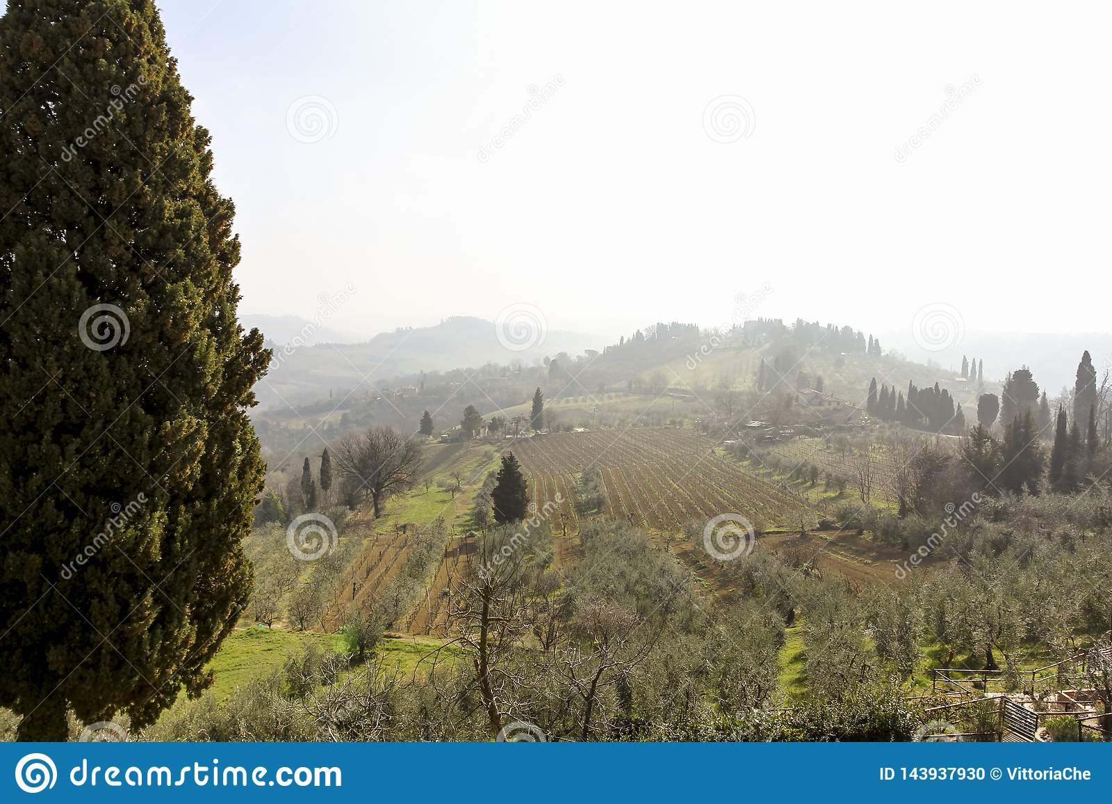 Früher nebeliger Morgen Schöne Frühlingslandschaft in Toskana, Italien, Europa