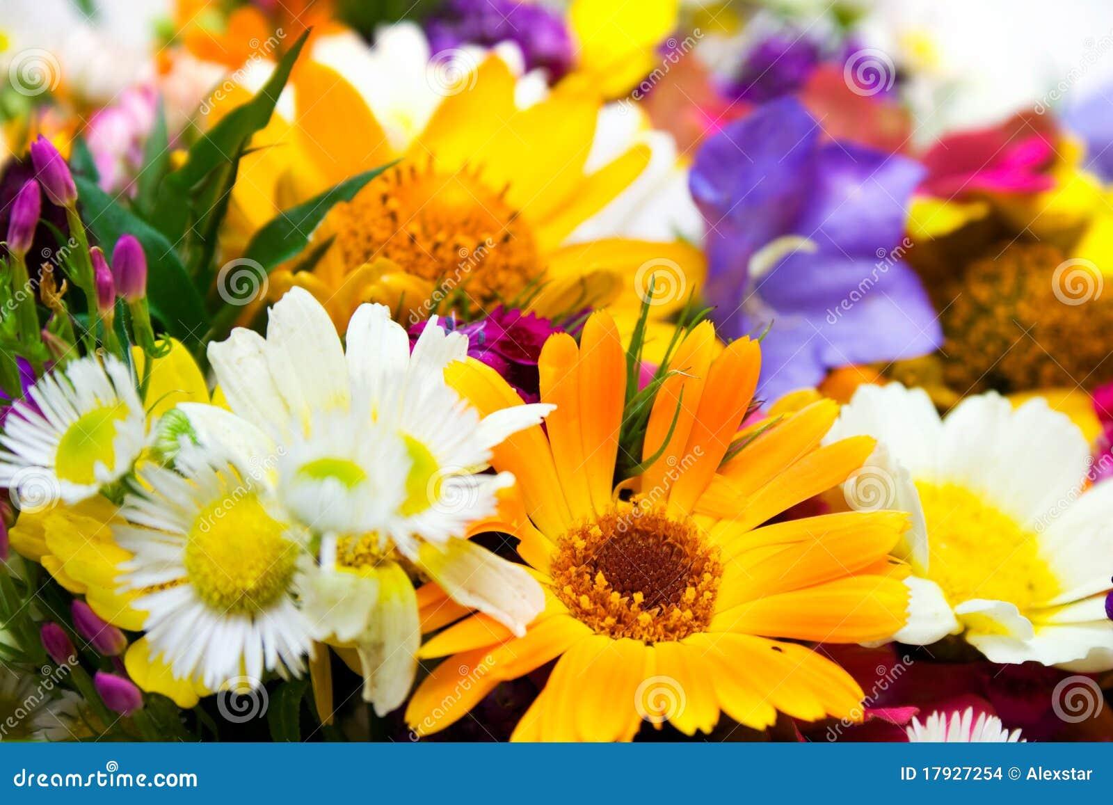 Frühling blüht Blumenstrauß