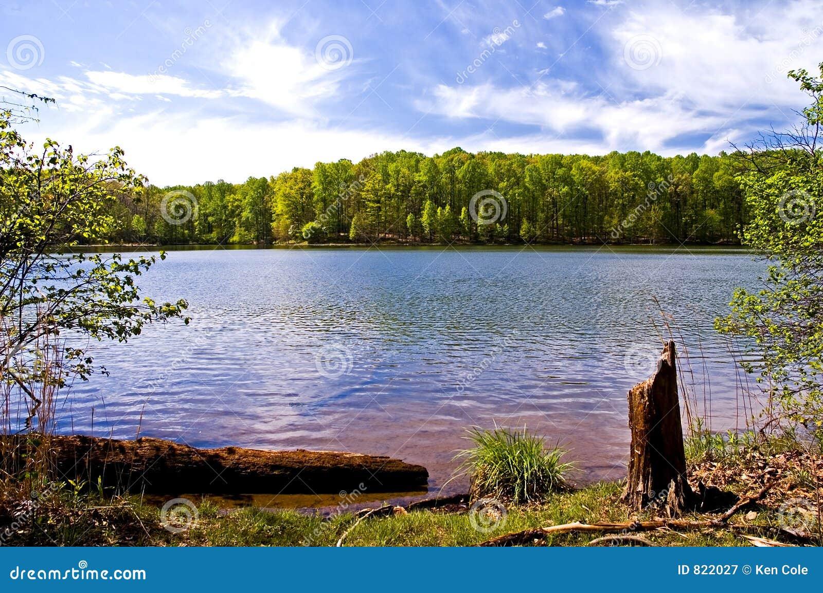 Frühling in dem See
