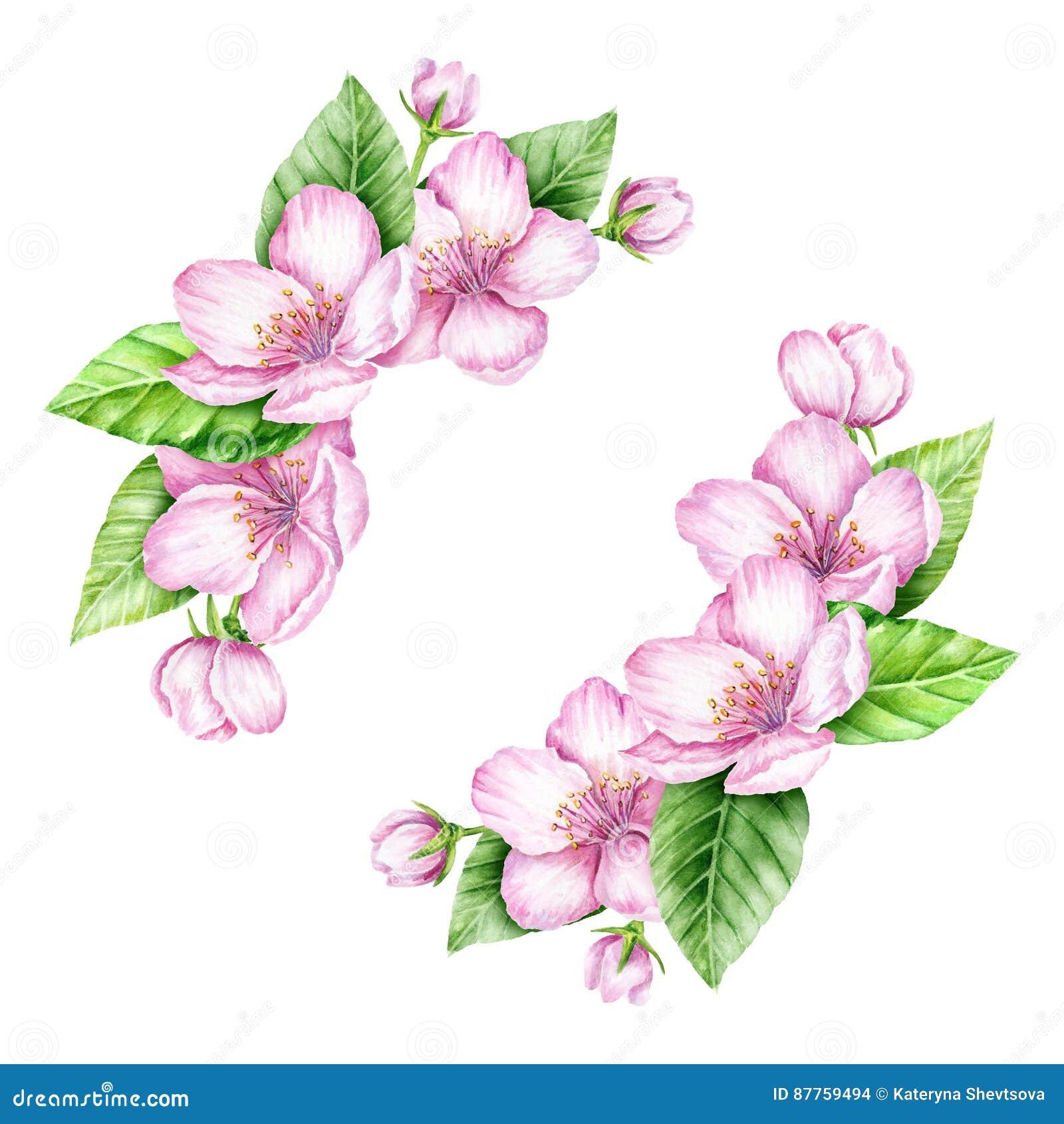 Frühlings Blüten Grenze Dekoratives Bild Einer