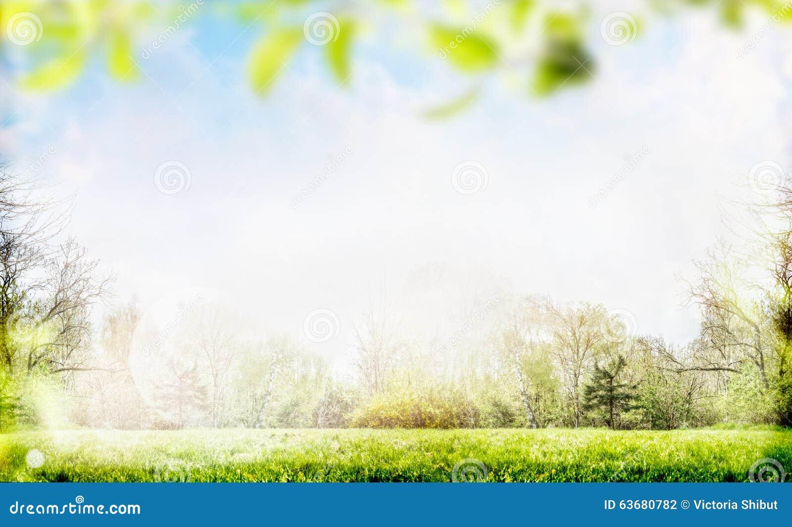 Frühlings- oder Sommernaturhintergrund mit Laub