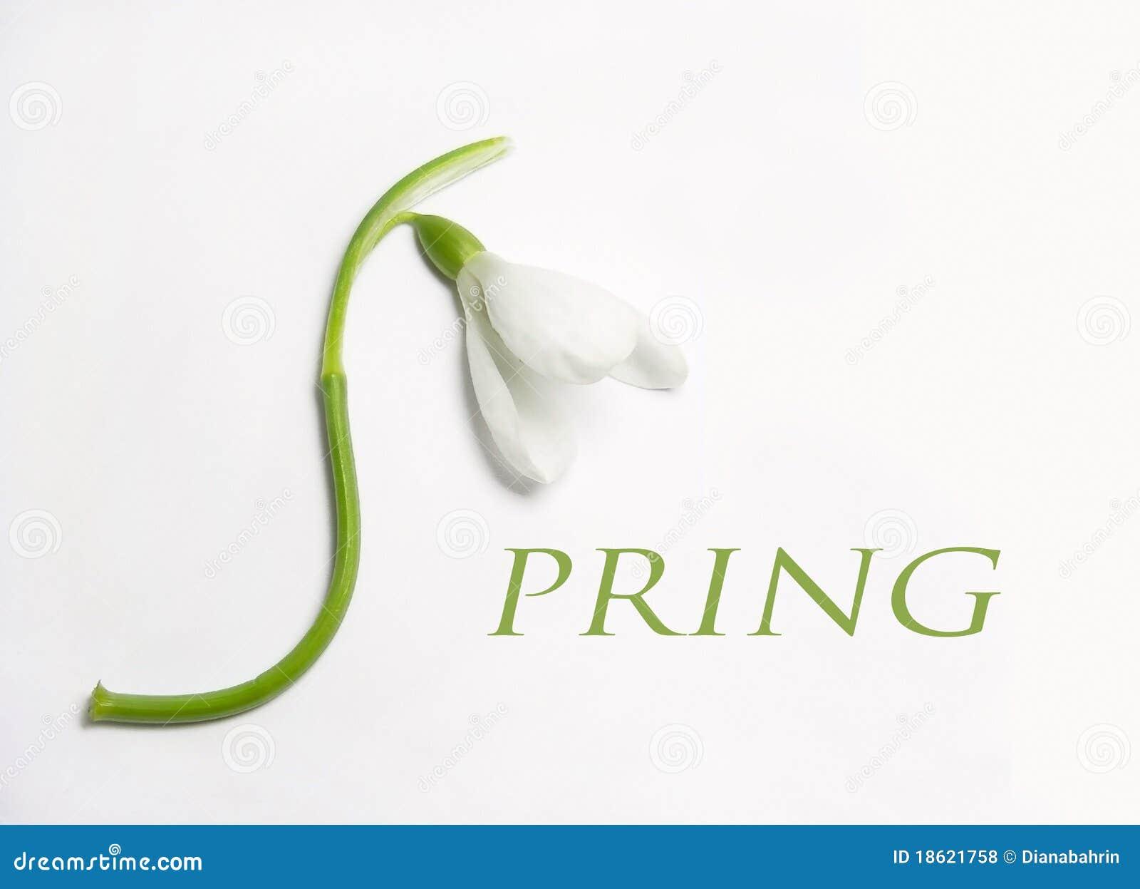Frühlings-Zeichen