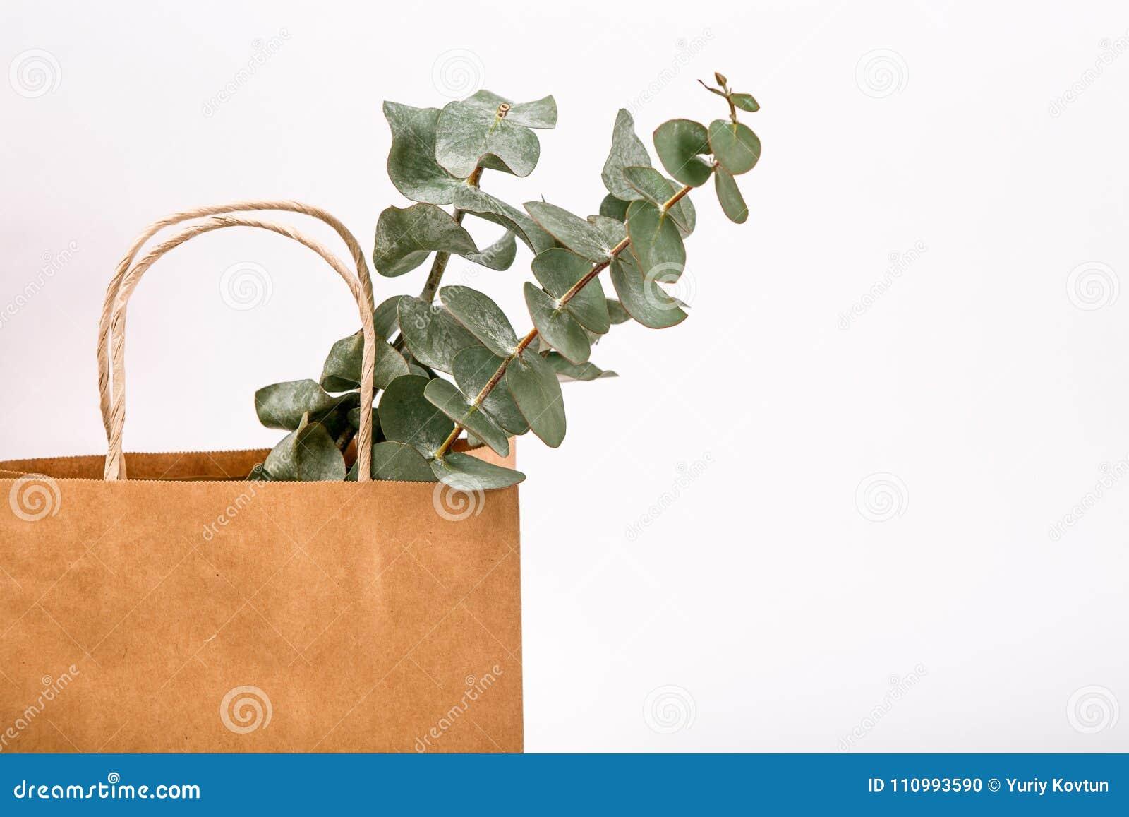 Frühlingskonzept Hintergrund der Einkaufstasche braunen Papiers Kraftpapiers weißes