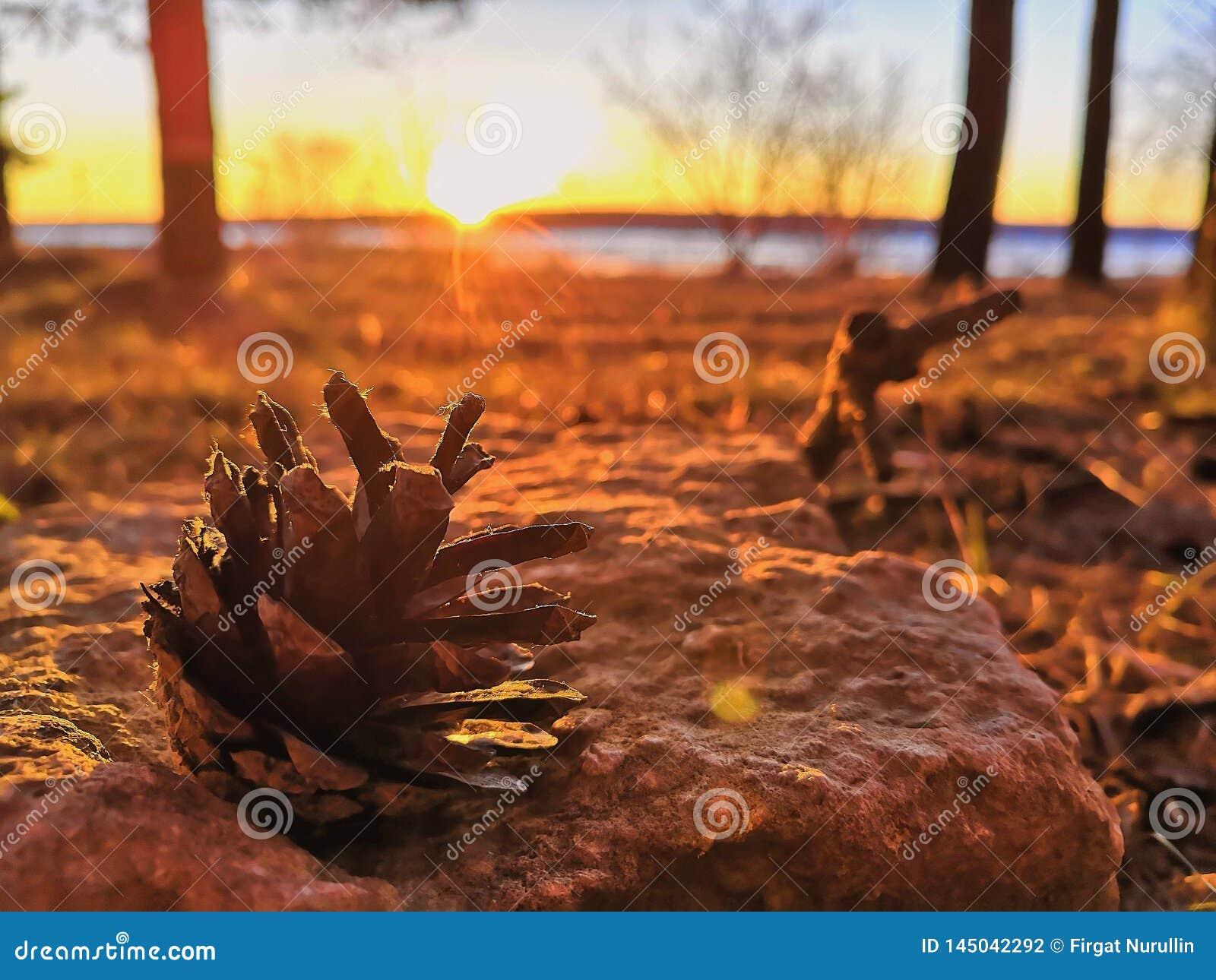 Frühlingssonnenuntergang auf den Banken des Kama-Flusses