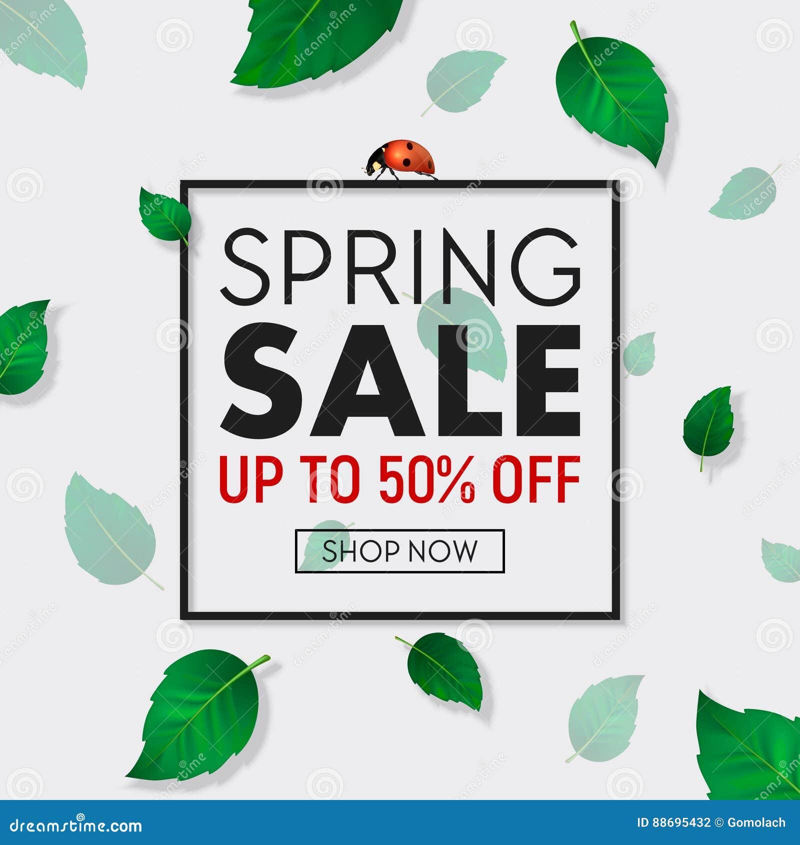 Frühlingsverkaufs-Hintergrundfahne Mit Rahmen, Schönen Grünblättern ...