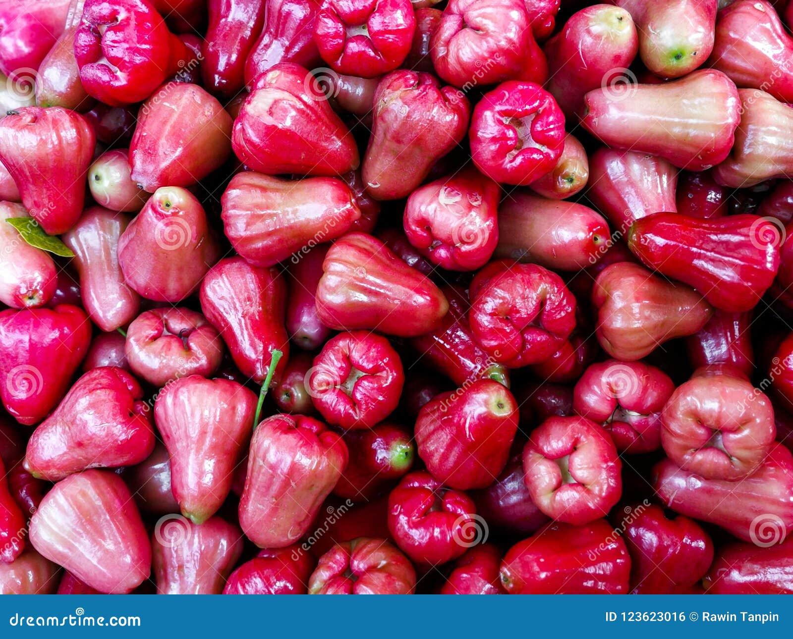 Fraîchement fruit de pomme rose de fruit ou affichage d airon de jambu à vendre