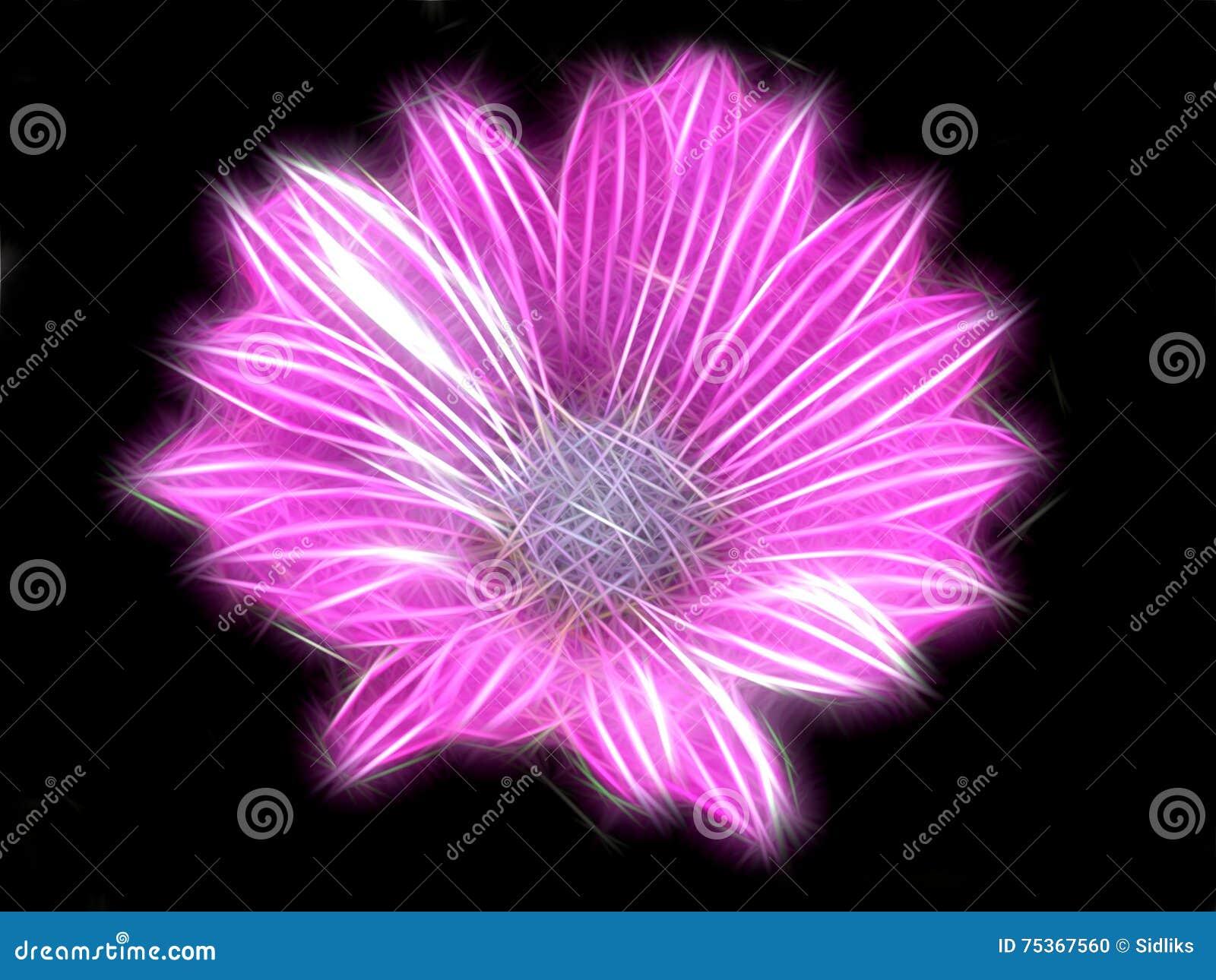 Fractal, der rosa Blume erleichtert