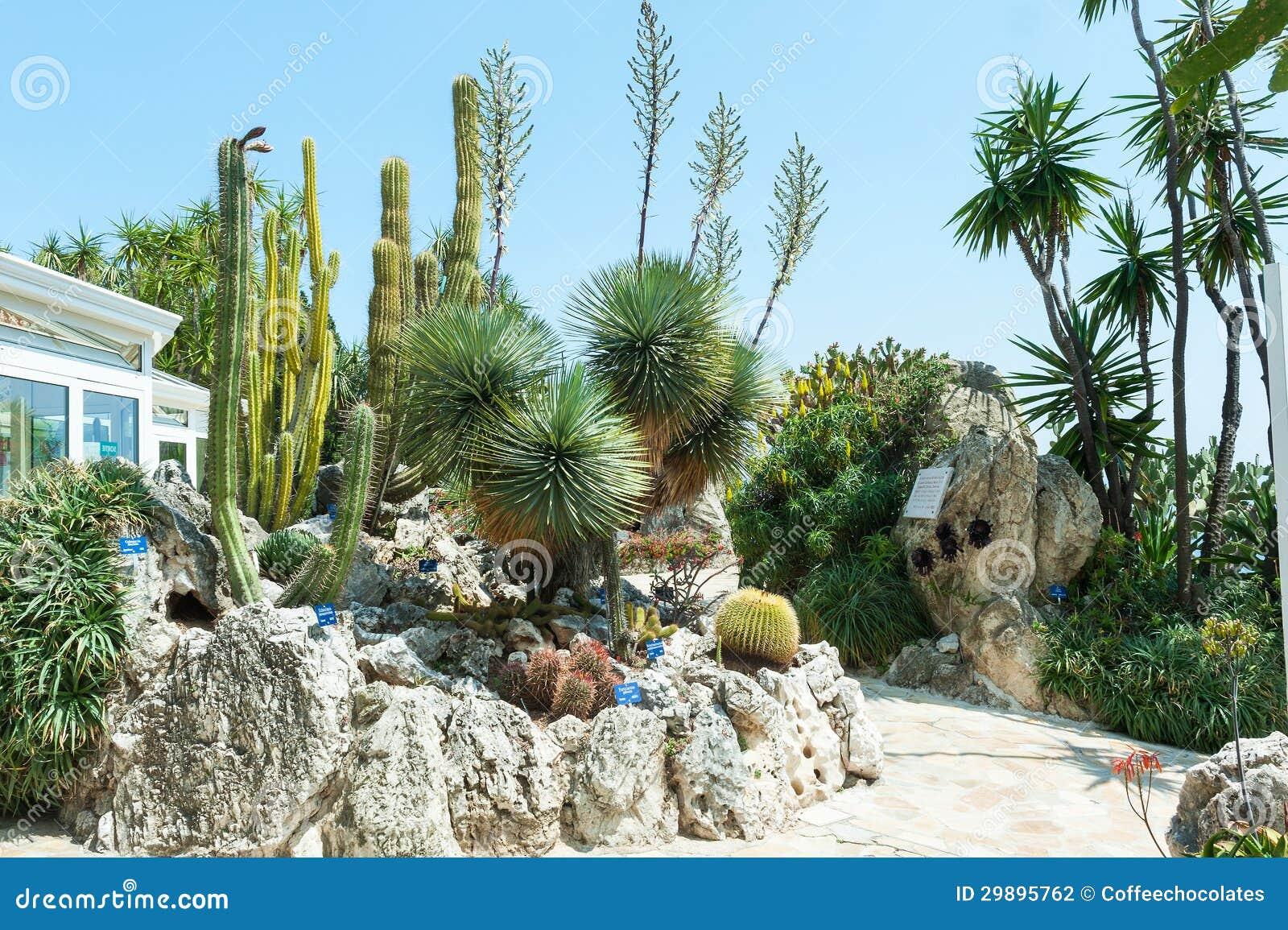 Garden cacti and succulents in monaco stock photo image for Jardines con cactus