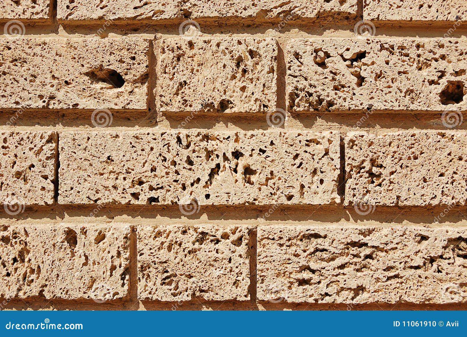 Fragment of a porous limestone wall