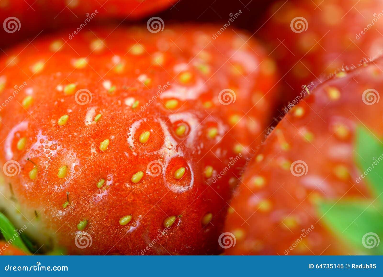 Fragole rosse fresche nel mercato di frutta