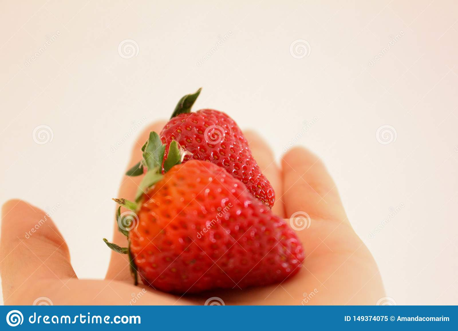 Fraises m?res ? disposition
