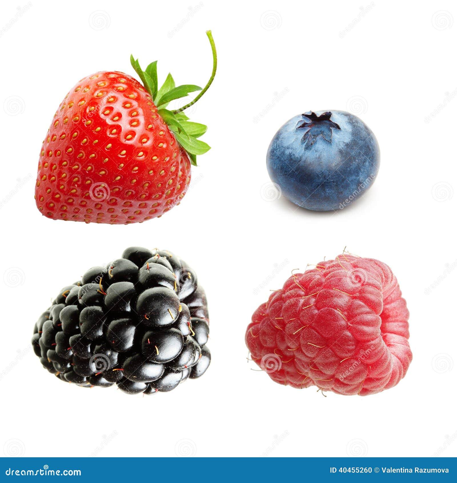 Framboise, fraise et myrtille d isolement