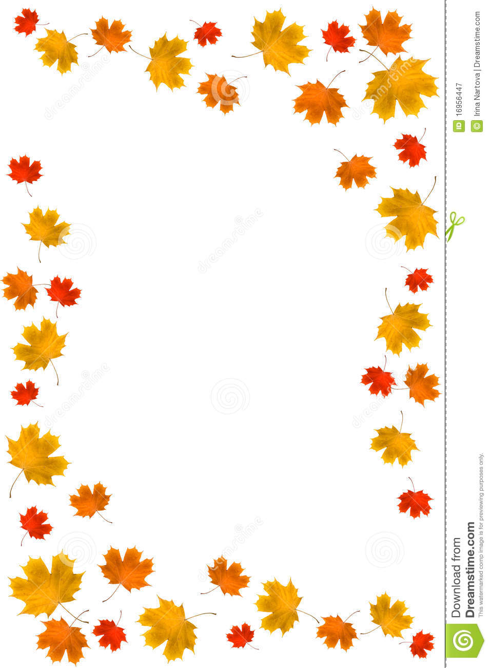 frame from autumn leaves stock image image of