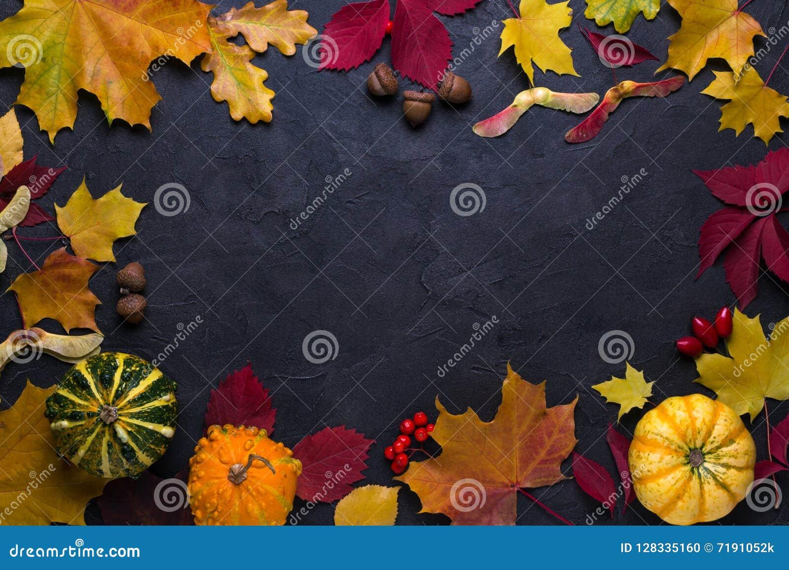 Frame with autumn maple leaves. Nature fall template for design, menu, postcard, banner, ticket, leaflet, poster. On dark backgr
