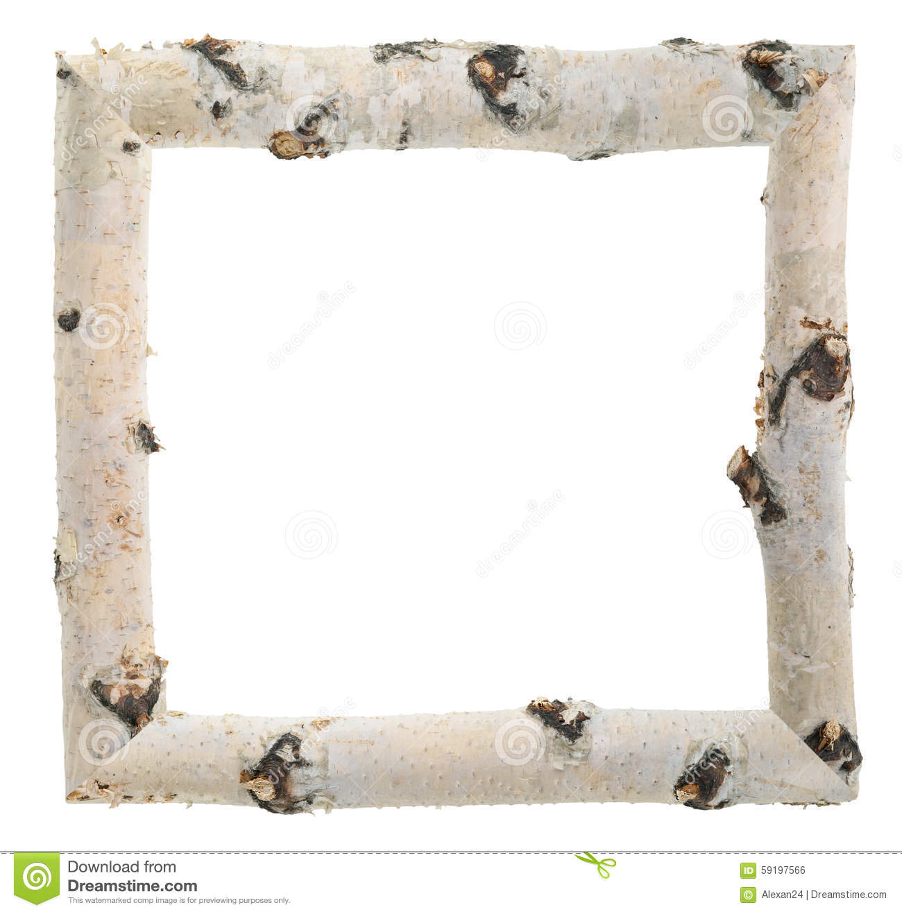 Frame of birch logs stock photo. Image of floral, macro - 59197566
