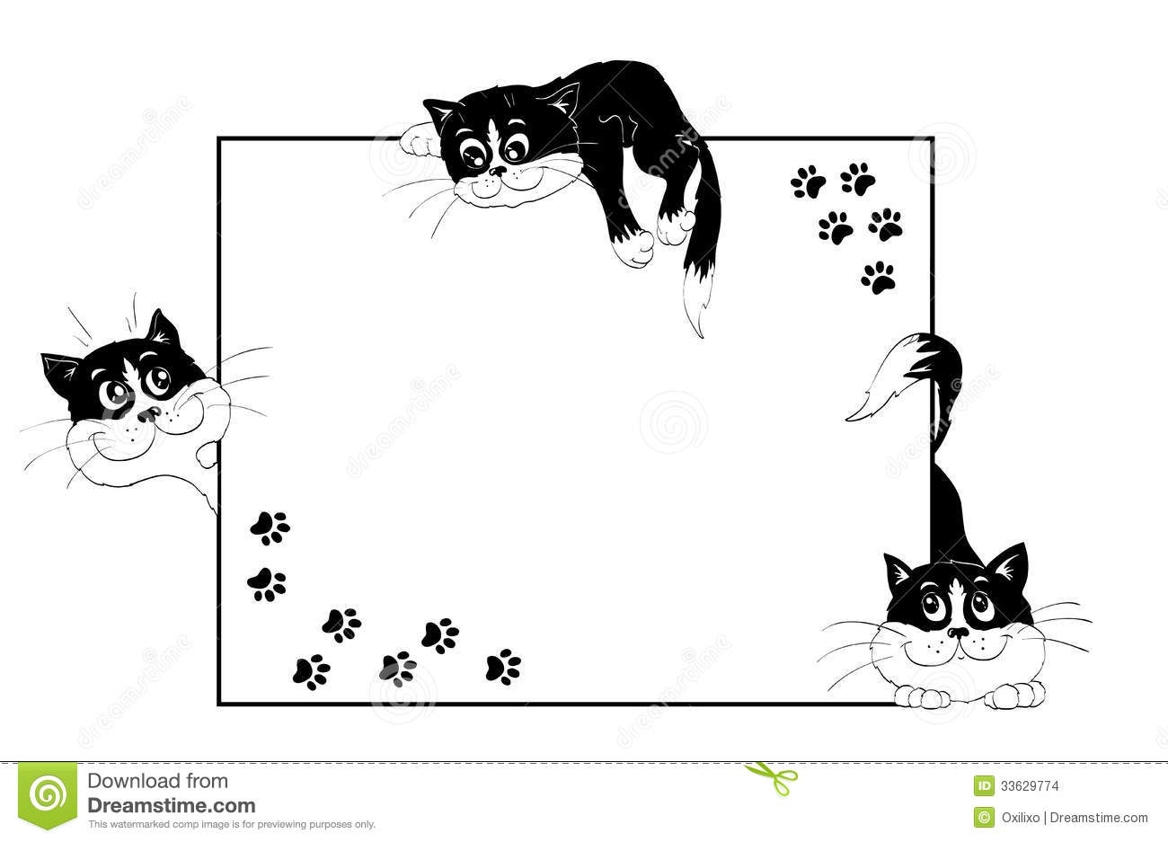... black-and-white kittens and cats steps on isolated white background