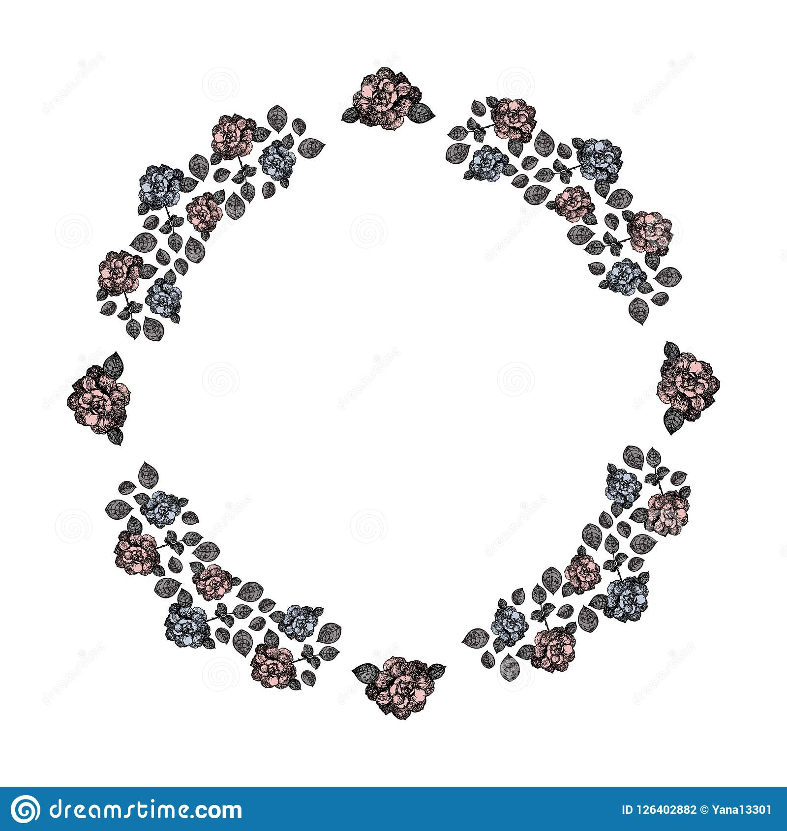 Frame. A circle of blue and pink roses and gray leaves. Vector.