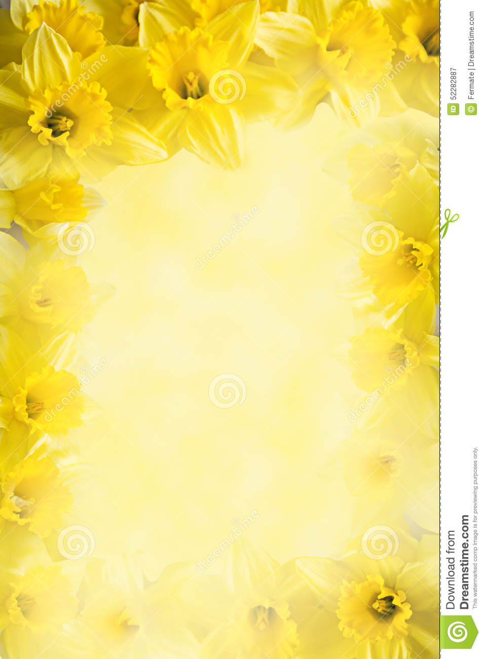 Frame From Daffodils Yellow Flower Background With Copy Space