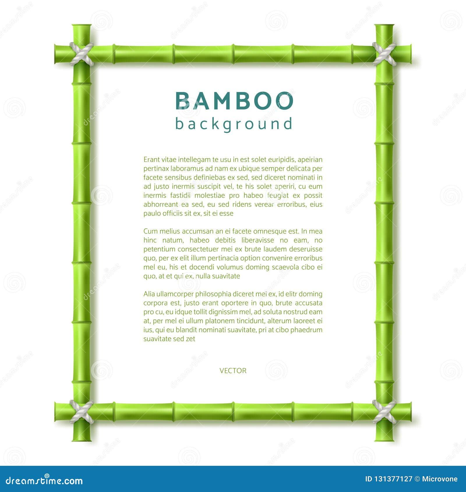 Frame de bambu Fundo do vetor do spa resort de Eco