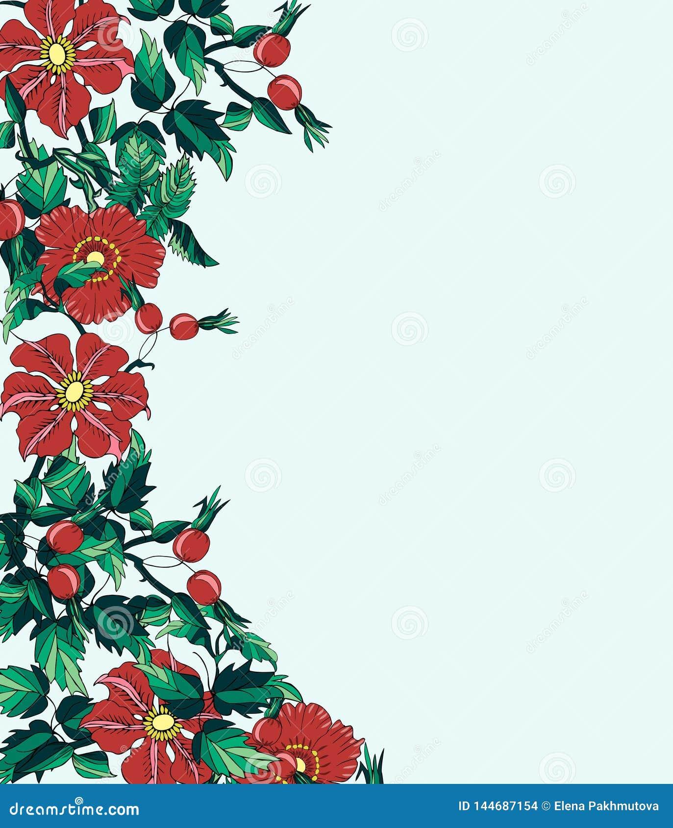 Frame Flower Border Floral Illustration Card Red Decoration
