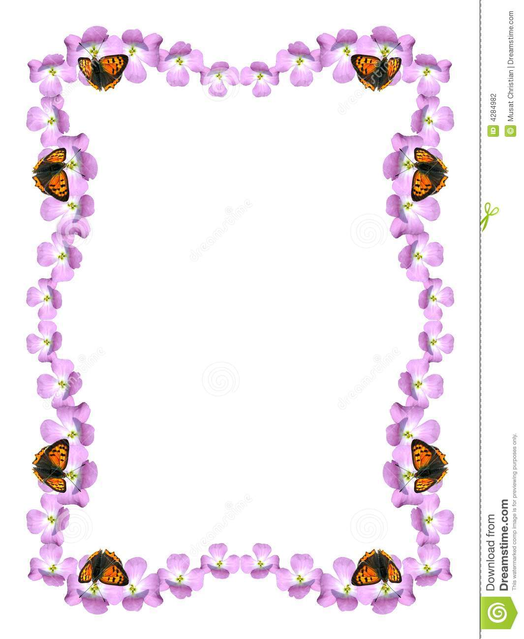 frame flower and butterfly
