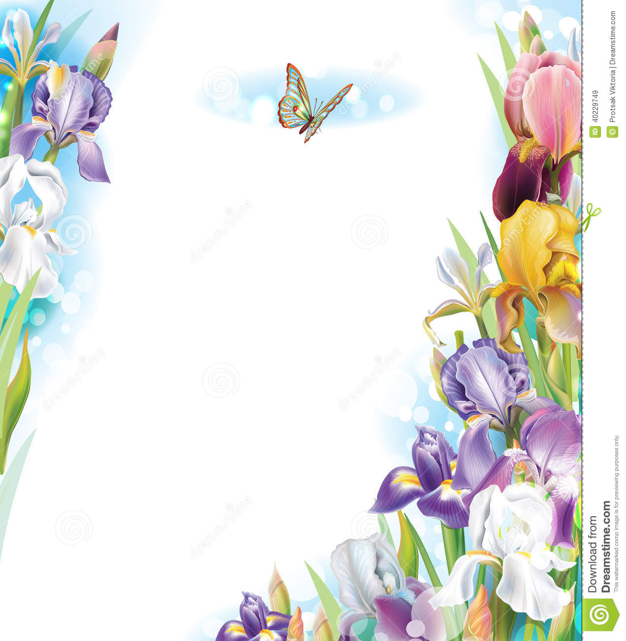 Frame with iris flowers stock vector image 40229749