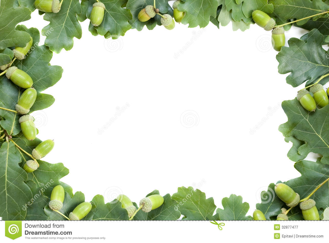 Frame Of Oak Leaves And Acorns Royalty Free Stock