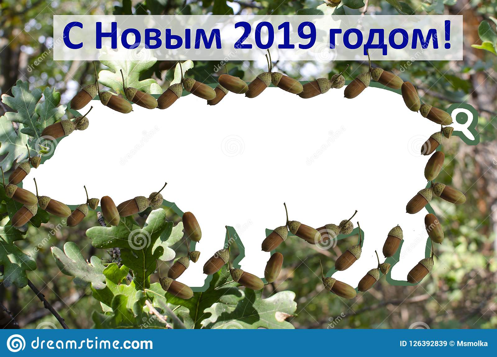 Frame for Photoshop `With the new 2019 year of pigs`