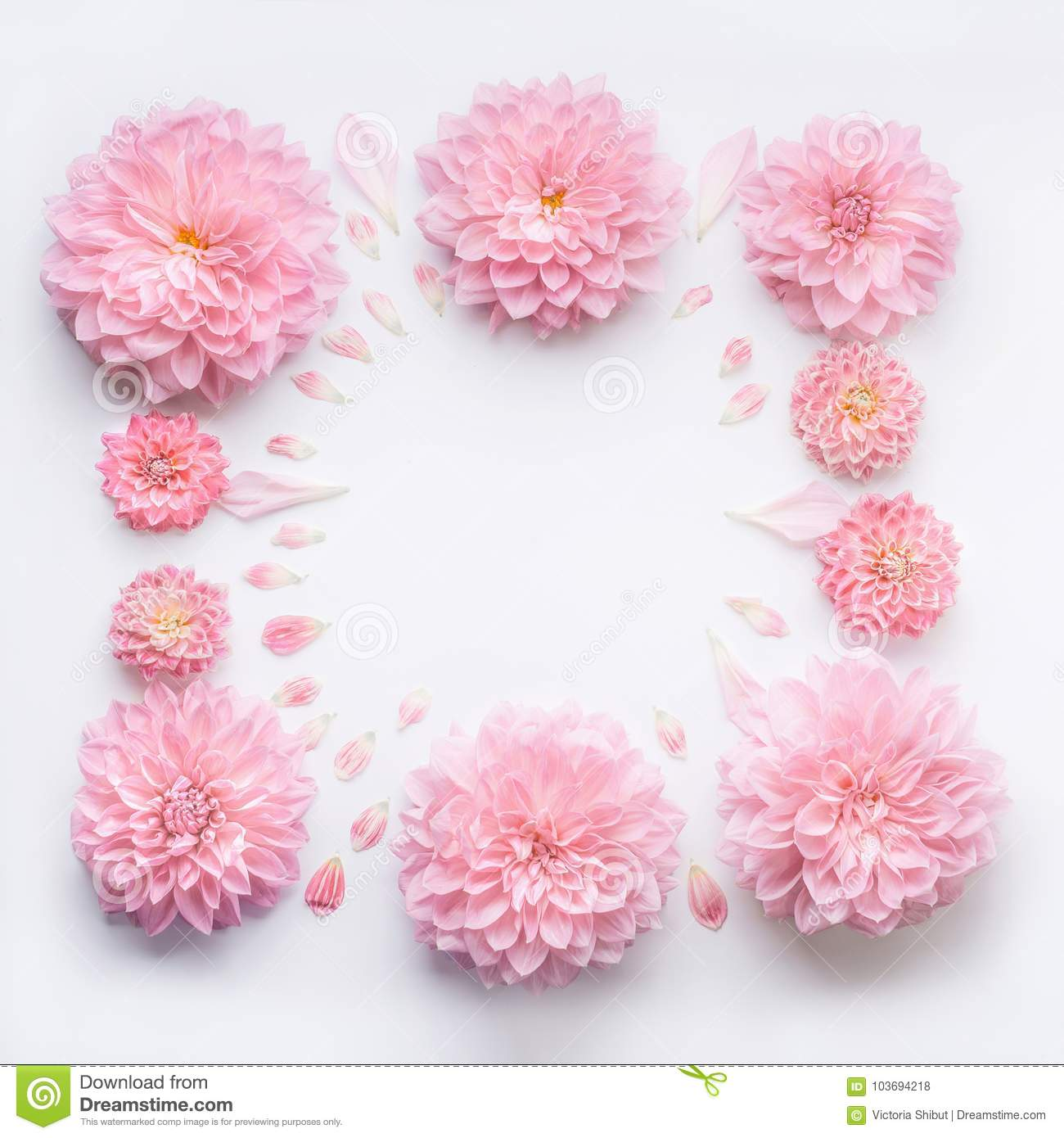 Frame Of Pink Pale Flowers With Petals On White Desktop Background
